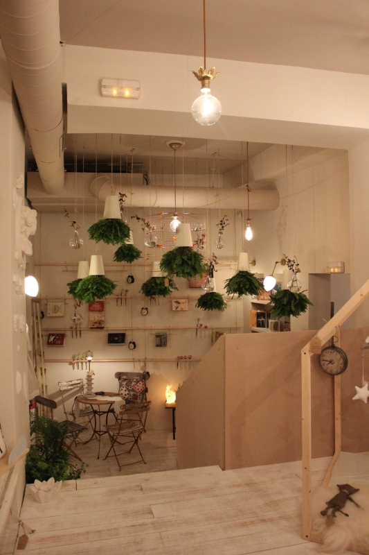 luces-plantas-jardin-cuentos