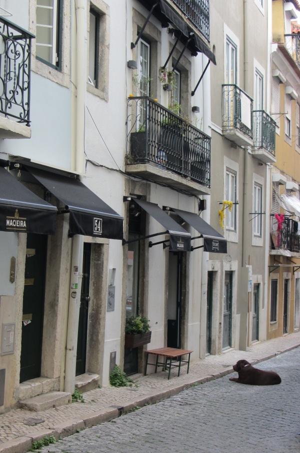 Calles-Lisboa-CrazyMary