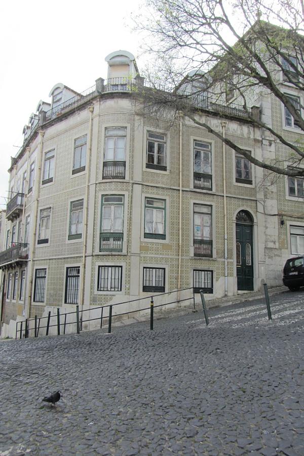 FAchas-Lisboa-8