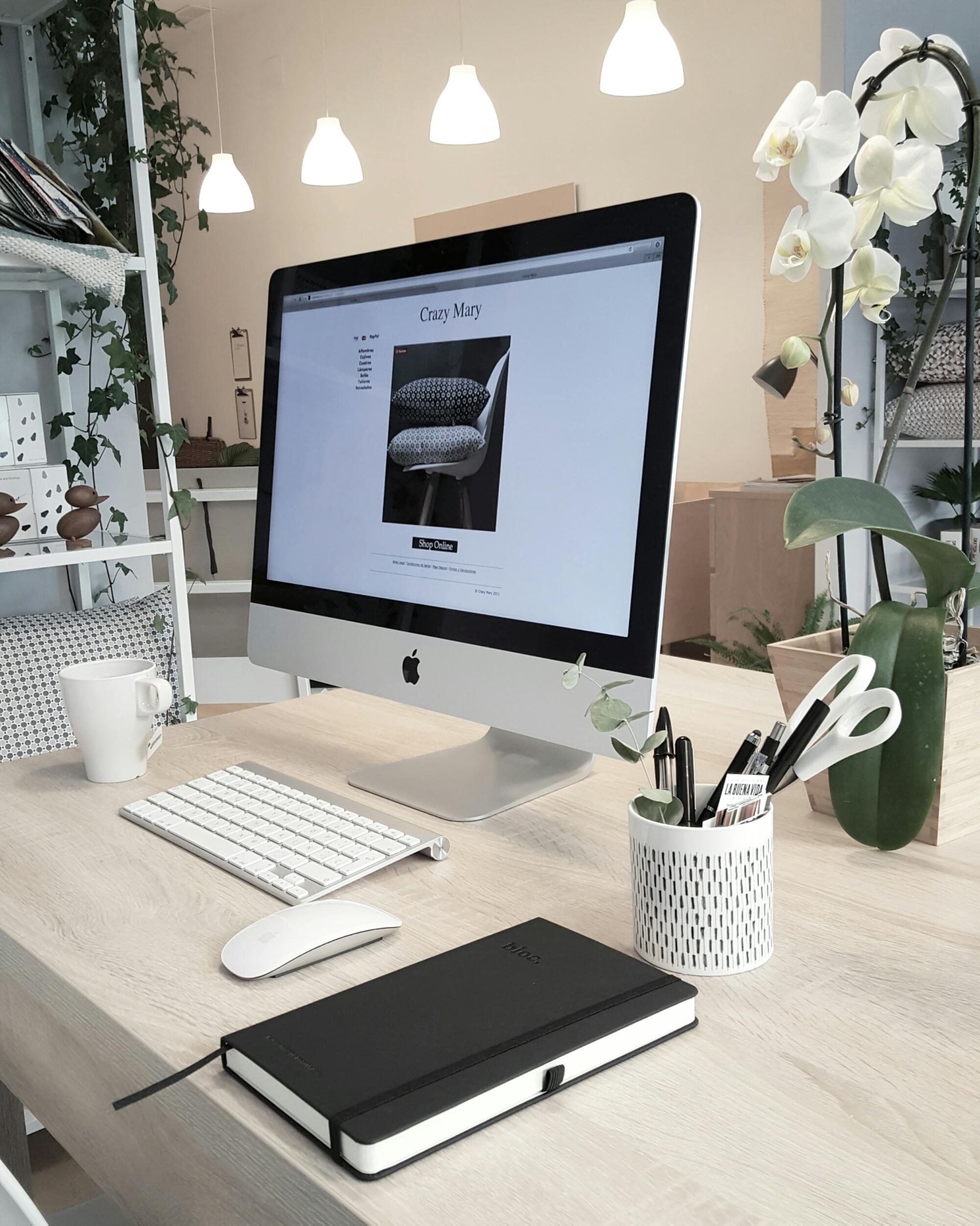 Proyectos decoracion online proyecto de decoracin online - Proyectos decoracion online ...